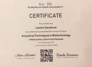 Academy Europe Free Online Courses
